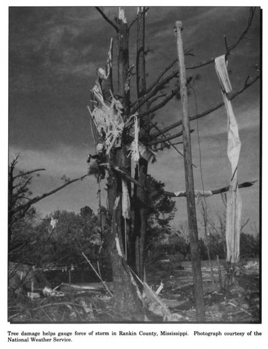 Brandon/Rankin County, MS F4 Tornado – November 21-22, 1992